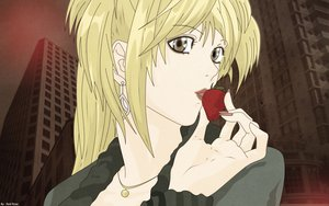 Rating: Safe Score: 10 Tags: amane_misa death_note food fruit signed strawberry vector User: 秀悟