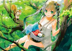 Rating: Safe Score: 70 Tags: animal apple dress eretto flowers food fruit gray_hair green_eyes long_hair scan summer_dress tree twintails User: luckyluna