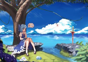 Rating: Safe Score: 130 Tags: animal bloomers book bow cirno clouds frog grass hakurei_reimu japanese_clothes miko ofuda paper skirt socks sugar_sound sword touhou tree water weapon User: Flandre93