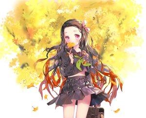 Rating: Safe Score: 52 Tags: autumn kamado_nezuko kimetsu_no_yaiba leaves mintchoco school_uniform User: FormX