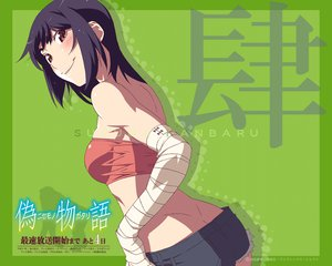Rating: Safe Score: 65 Tags: kanbaru_suruga monogatari_(series) nisemonogatari User: Nodoka10