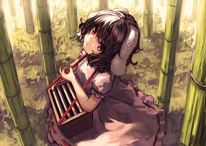 Rating: Safe Score: 72 Tags: animal_ears bellabow brown_hair bunny_ears bunnygirl dress inaba_tewi red_eyes short_hair touhou tree User: Flandre93