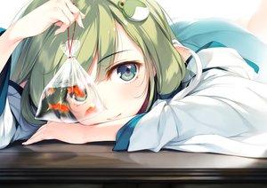Rating: Safe Score: 358 Tags: animal blue_eyes close fish green_hair japanese_clothes ke-ta kochiya_sanae miko touhou water User: BattlequeenYume