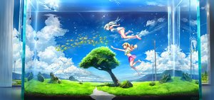 Rating: Safe Score: 44 Tags: 2girls animal aqua_hair barefoot clouds dress fish grass long_hair original scenic sky summer_dress tree underwater waifu2x water wingheart User: gnarf1975