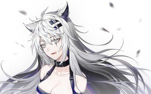 Rating: Safe Score: 43 Tags: aliasing animal_ears arknights breasts canegouzi choker cleavage fang gray_eyes gray_hair lappland_(arknights) long_hair polychromatic scar white wolfgirl User: otaku_emmy