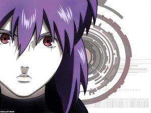 Rating: Safe Score: 50 Tags: ghost_in_the_shell kusanagi_motoko User: Oyashiro-sama