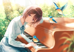Rating: Safe Score: 80 Tags: animal bird blush brown_hair hiten_goane_ryu instrument original piano purple_eyes shirt short_hair skirt User: BattlequeenYume