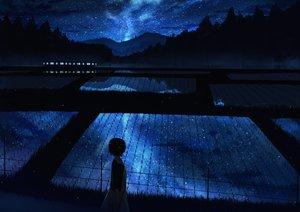 Rating: Safe Score: 99 Tags: clouds dress forest gensuke grass landscape night original reflection scenic short_hair stars train tree water User: RyuZU