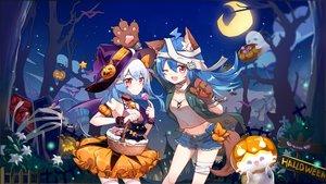 Rating: Safe Score: 95 Tags: animal animal_ears bili_bili_douga bili_girl_22 bili_girl_33 cat flot halloween User: BattlequeenYume