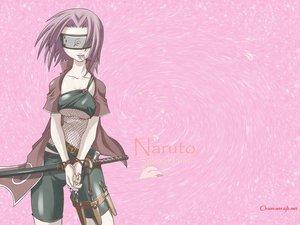 Rating: Safe Score: 94 Tags: haruno_sakura katana naruto ninja pink pink_hair short_hair sword tasaka_shinnosuke vector weapon User: deblock