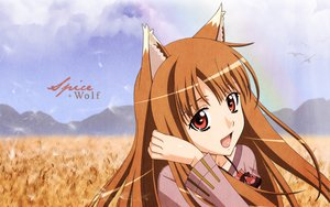 Rating: Safe Score: 50 Tags: animal_ears clouds horo landscape long_hair ookami_to_koushinryou orange_hair red_eyes scenic sky wolfgirl User: Zero