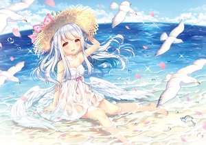 Rating: Safe Score: 48 Tags: animal beach bird dress hat long_hair original red_eyes see_through summer_dress waifu2x wasabi_(sekai) water wet white_hair wings User: luckyluna