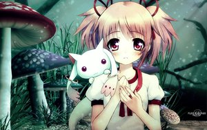 Rating: Safe Score: 86 Tags: kaname_madoka kyuubee mahou_shoujo_madoka_magica pink_eyes pink_hair ribbons short_hair signed twintails User: Charly