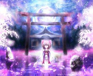 Rating: Safe Score: 120 Tags: apple228 butterfly hakurei_reimu japanese_clothes miko moon night ofuda shrine stars torii touhou water User: Zolxys