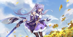Rating: Safe Score: 34 Tags: catttleo flowers genshin_impact keqing_(genshin_impact) long_hair petals purple_hair sword twintails weapon User: BattlequeenYume