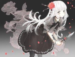 Rating: Safe Score: 36 Tags: choker dress flowers gothic gradient gray gray_eyes knife long_hair original pantyhose petals ringoro rose weapon white_hair User: otaku_emmy