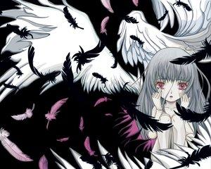 Rating: Safe Score: 19 Tags: doll feathers pink_eyes polychromatic rozen_maiden suigintou tears wings User: Oyashiro-sama