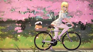 Rating: Safe Score: 60 Tags: 5555_96 anthropomorphism ass azur_lane bicycle dress pantyhose petals renown_(azur_lane) upskirt User: gnarf1975