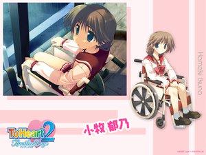Rating: Safe Score: 12 Tags: amaduyu_tatsuki aquaplus komaki_ikuno leaf to_heart to_heart_2 User: Oyashiro-sama