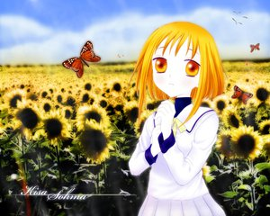 Rating: Safe Score: 1 Tags: fruits_basket sohma_kisa sunflower User: Oyashiro-sama