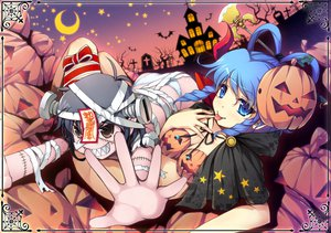 Rating: Safe Score: 96 Tags: animal bat blue_hair chima_q halloween kaku_seiga miyako_yoshika moon pumpkin touhou User: opai