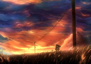 Rating: Safe Score: 106 Tags: bicycle clouds grass kazeno kiss original silhouette sky summer sunset User: STORM