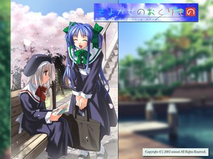 Rating: Safe Score: 6 Tags: blue_hair gray_hair long_hair narukaze_minamo seifuku tsukishiro_hikari twintails wind:_a_breath_of_heart User: Oyashiro-sama