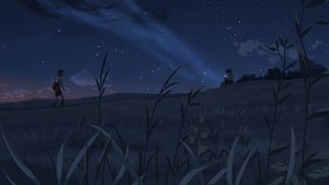 Rating: Safe Score: 35 Tags: byousoku_5_centimetre clouds dark grass night sky sumida_kanae toono_takaki User: cadenza