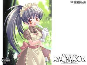Rating: Safe Score: 16 Tags: apron bow gloves gray_hair headdress ishihara_masumi jpeg_artifacts long_hair maid orange_eyes ponytail ragnarok_online User: Oyashiro-sama