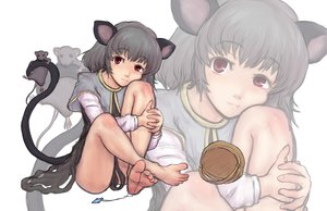 Rating: Safe Score: 39 Tags: animal animal_ears barefoot gray_hair kuro_suto_sukii mouse mousegirl nazrin red_eyes tail touhou zoom_layer User: PAIIS