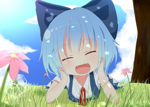 Rating: Safe Score: 86 Tags: akisha animal blue_hair blush bow cirno fang flowers frog grass jpeg_artifacts short_hair touhou User: C4R10Z123GT