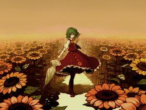 Rating: Safe Score: 40 Tags: flowers green_hair kazami_yuuka red_eyes short_hair skirt sunflower touhou umbrella User: 秀悟