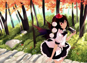 Rating: Safe Score: 50 Tags: camera dress hao_(patinnko) red_eyes shameimaru_aya touhou tree wings User: opai