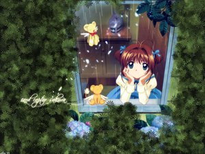 Rating: Safe Score: 7 Tags: card_captor_sakura kero kinomoto_sakura teruterubouzu User: Oyashiro-sama