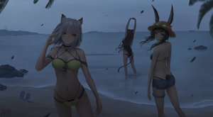Rating: Safe Score: 122 Tags: amiya_(arknights) animal_ears arknights beach bikini black_hair blue_eyes brown_hair bunny_ears dark gray_hair green_eyes jay_xu kal'tsit_(arknights) navel short_hair shorts skyfire_(arknights) swimsuit tail water User: BattlequeenYume