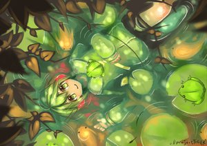 Rating: Safe Score: 31 Tags: animal fish gachapoid green headphones vocaloid water User: HawthorneKitty