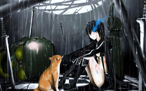 Rating: Safe Score: 148 Tags: animal black_rock_shooter blush cat kuroi_mato rain sword weapon wet User: BoobMaster