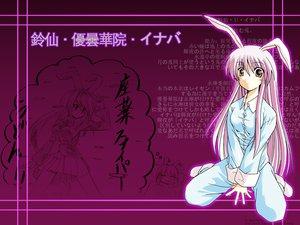 Rating: Safe Score: 29 Tags: animal_ears bunny_ears bunnygirl pajamas reisen_udongein_inaba touhou User: WhiteExecutor