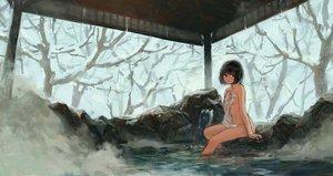 Rating: Questionable Score: 111 Tags: bath black_hair blue_eyes breasts navel nude onsen original short_hair tentsu towel tree water winter User: luckyluna