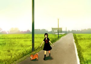 Rating: Safe Score: 9 Tags: animal dog seifuku tamayo User: HawthorneKitty