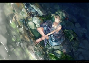 Rating: Safe Score: 30 Tags: breasts cleavage dress green_eyes green_hair hat kawashiro_nitori short_hair signed touhou water zhu_xiang User: RyuZU