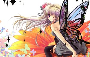 Rating: Safe Score: 75 Tags: fairy flowers izumi_tsubasu wings User: Avenger