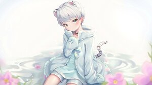 Rating: Safe Score: 35 Tags: all_male animal_ears catboy choker ciawasemono flowers gray_hair male original short_hair tail trap User: BattlequeenYume