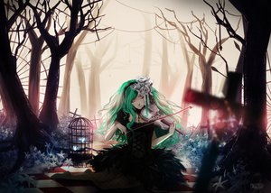 Rating: Safe Score: 124 Tags: butterfly dotentity dress green_hair hatsune_miku necklace violin vocaloid User: FormX