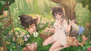 Rating: Safe Score: 44 Tags: aliasing animal animal_ears blush book brown_hair dasima flowers forest grass long_hair original red_eyes tail tree wolfgirl User: BattlequeenYume