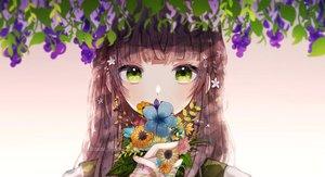 Rating: Safe Score: 67 Tags: brown_hair close flowers gradient green_eyes long_hair mame_kuri original watermark User: mattiasc02