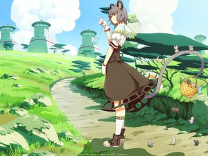 Rating: Safe Score: 51 Tags: animal animal_ears clouds dress gray_hair landscape mouse mousegirl nazrin red_eyes scenic short_hair sky tail touhou User: Maboroshi