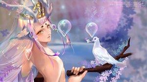 Rating: Safe Score: 30 Tags: all_male animal bird flowers gray_hair greeny_(maindo) horns long_hair male nipples onmyouji shishio_(onmyouji) yellow_eyes User: RyuZU