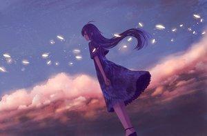 Rating: Safe Score: 55 Tags: blue_hair bou_nin clouds dress long_hair original sky User: luckyluna