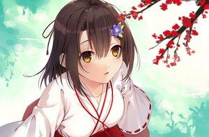 Rating: Safe Score: 46 Tags: akanebi brown_hair close japanese_clothes miko orange_eyes original short_hair User: RyuZU